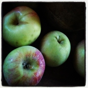 Fuji apples (Image by Liz Cameron)