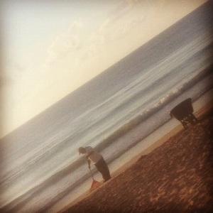 Tulum mexico seaweed beach playa