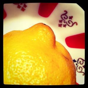 Lemon and traditional Turkish tea saucer (Image by Liz Cameron)