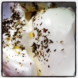 Mint on yogurt at Mustafa Bey's Çiftlik Evi in Gaziveren, Northern Cyprus (Image by Liz Cameron)