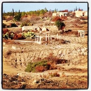 An abandoned village near Yeşilırmak near the UN Buffer Zone in Northern Cyprus (Image by Liz Cameron)